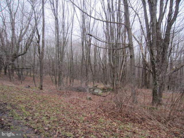 Lots 26 & 28 Root Beachy Road, GRANTSVILLE, MD 21536 (#MDGA132010) :: Peter Knapp Realty Group
