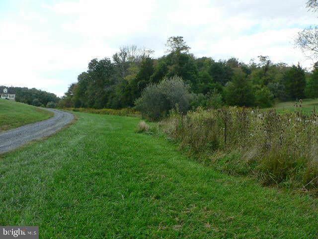 547 Woods Mill Road, STEPHENSON, VA 22656 (#VAFV155428) :: AJ Team Realty