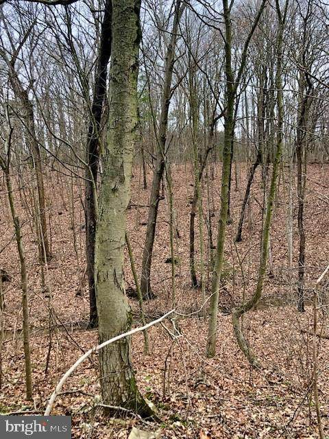 Lot 6 Reibers Church Road, SHERMANS DALE, PA 17090 (#PAPY101830) :: TeamPete Realty Services, Inc