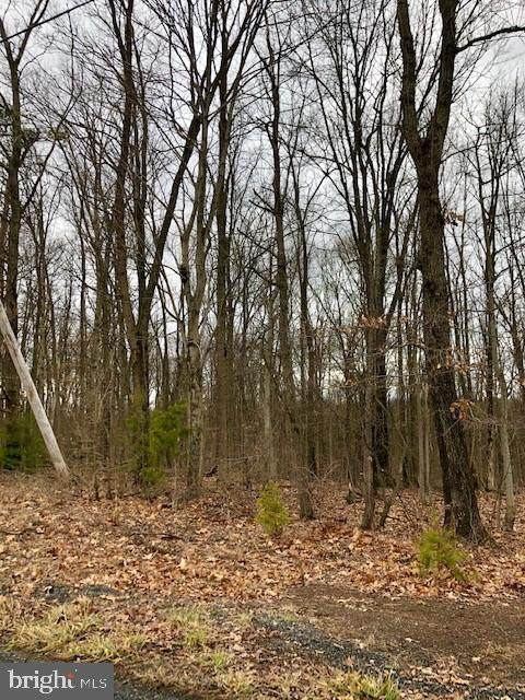 133 (Lot 3) Reibers Church Road, SHERMANS DALE, PA 17090 (#PAPY101832) :: TeamPete Realty Services, Inc