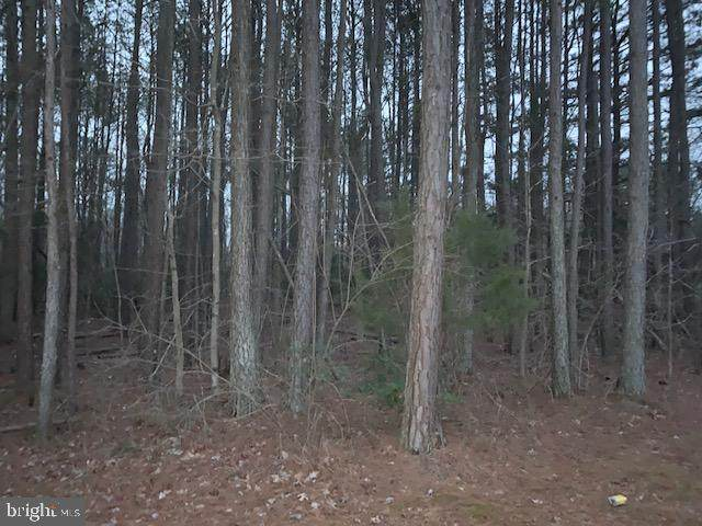 Lot C Bethany Church Rd, BUMPASS, VA 23024 (#VALA120624) :: RE/MAX Cornerstone Realty