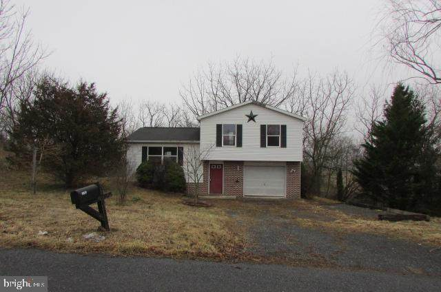 1183 Matamoras Road, HALIFAX, PA 17032 (#PADA119296) :: The Joy Daniels Real Estate Group