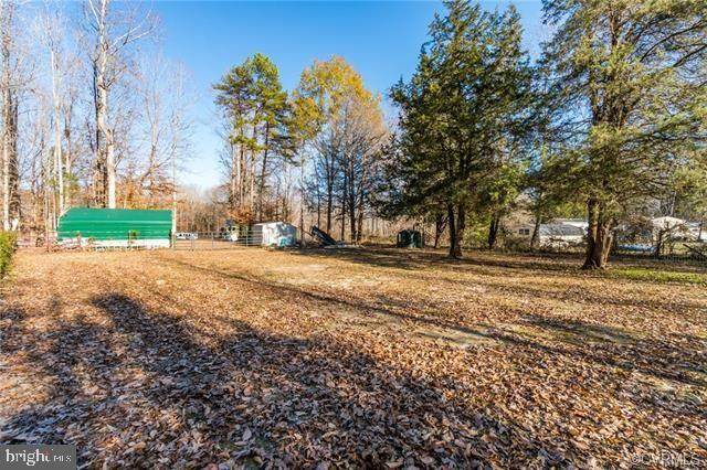1401 Old Apple Grove Road, MINERAL, VA 23117 (#VALA120664) :: CR of Maryland