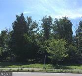 5513 Clifton Road, CLIFTON, VA 20124 (#VAFX1112278) :: The Redux Group