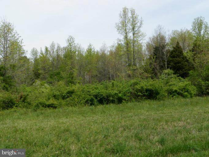 Cloquet Road - Photo 1