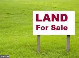 0 Oak Road, GREENWOOD, DE 19933 (#DESU156780) :: Colgan Real Estate