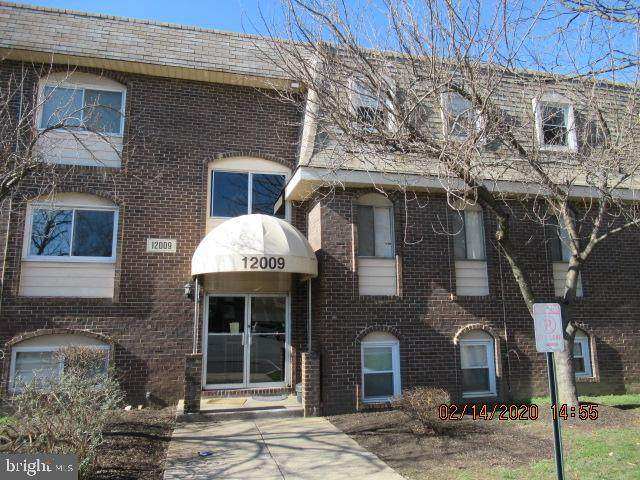 12009 Tarragon Road L, REISTERSTOWN, MD 21136 (#MDBC486538) :: John Smith Real Estate Group