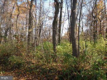 140 Bourbon Trail, FAIRFIELD, PA 17320 (#PAAD110682) :: CENTURY 21 Core Partners