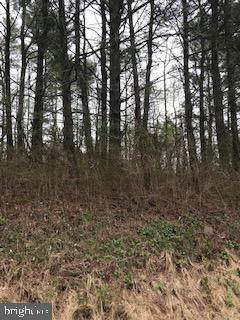 0 Bowers Mill Road, PENNSBURG, PA 18073 (#PAMC643430) :: John Smith Real Estate Group