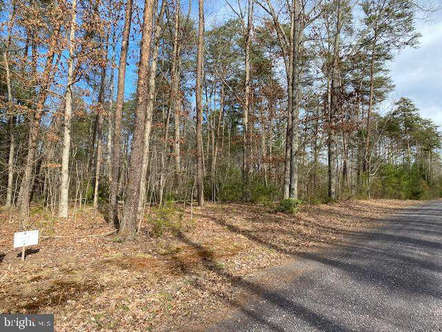3A Mountain Springs Ln, RIXEYVILLE, VA 22737 (#VACU140912) :: Arlington Realty, Inc.