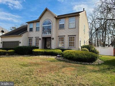 17 Frederick Street, SICKLERVILLE, NJ 08081 (MLS #NJCD390052) :: The Dekanski Home Selling Team