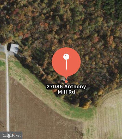 27086 Anthony Mill Road Lot B, DENTON, MD 21629 (#MDCM123862) :: Bob Lucido Team of Keller Williams Integrity