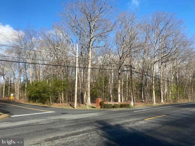 Lot 1 Woodhaven Drive - Photo 1