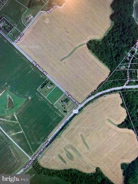 Big Woods Road, WORTON, MD 21678 (#MDKE116412) :: Bruce & Tanya and Associates