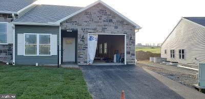 11250 Gopher Drive N, WAYNESBORO, PA 17268 (#PAFL172206) :: Bruce & Tanya and Associates