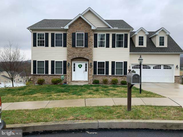 15 Dogwood Terrace, DILLSBURG, PA 17019 (#PAYK136228) :: The Joy Daniels Real Estate Group