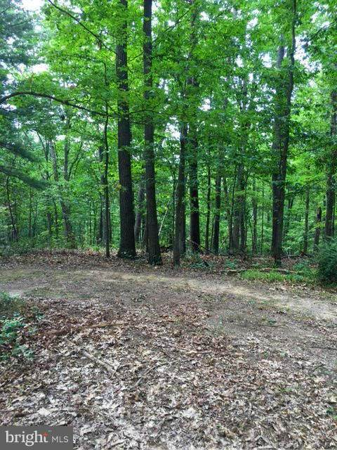 0 Western Ct Lot 30, HEDGESVILLE, WV 25427 (#WVMO116744) :: Jennifer Mack Properties