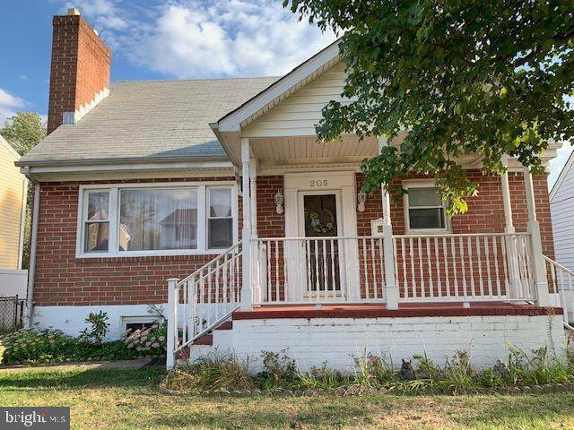 205 Camrose Avenue, BALTIMORE, MD 21225 (#MDAA432310) :: Network Realty Group