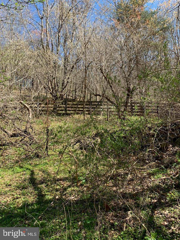 1167 Cubbage Hollow Road - Photo 1