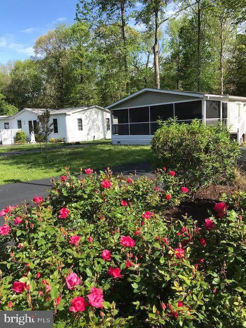 8 White Pine Drive, MILLSBORO, DE 19966 (#DESU160286) :: The Allison Stine Team