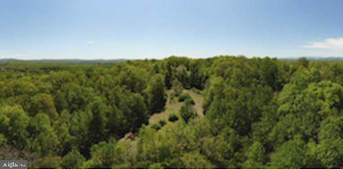 0 Varzara Rd, MARSHALL, VA 20115 (#VAFQ165366) :: Debbie Dogrul Associates - Long and Foster Real Estate