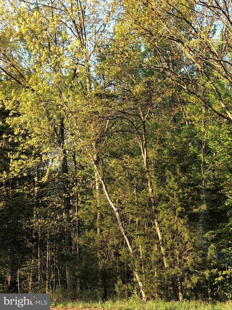 12038 Nokesville Road - Photo 1