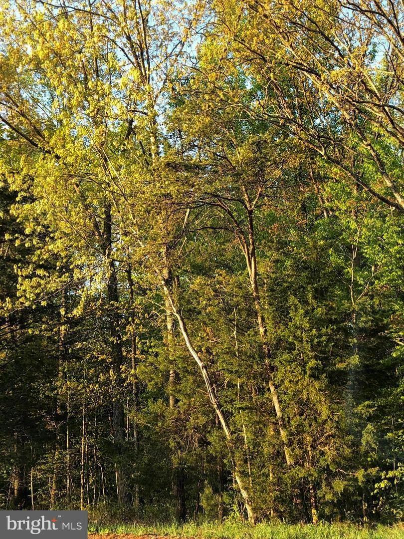 12054 Nokesville Road - Photo 1
