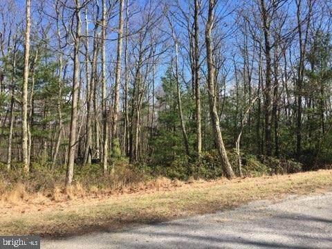 85 Scarlet Way, BIGLERVILLE, PA 17307 (#PAAD111484) :: Liz Hamberger Real Estate Team of KW Keystone Realty