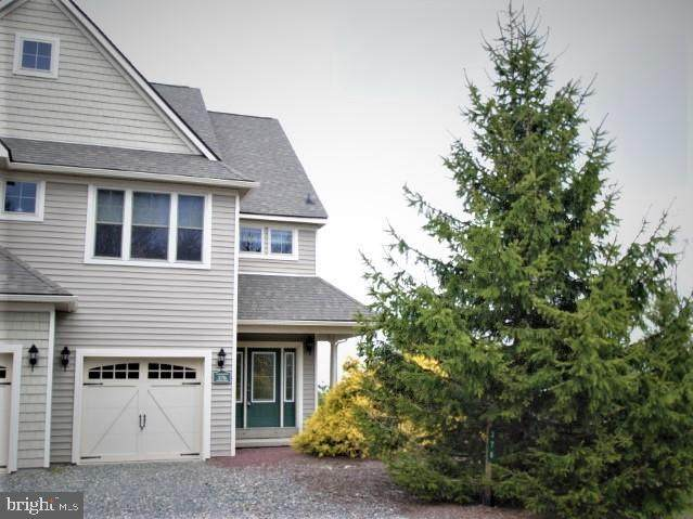 376 Linden Ct, TANNERSVILLE, PA 18372 (#PAMR106200) :: LoCoMusings