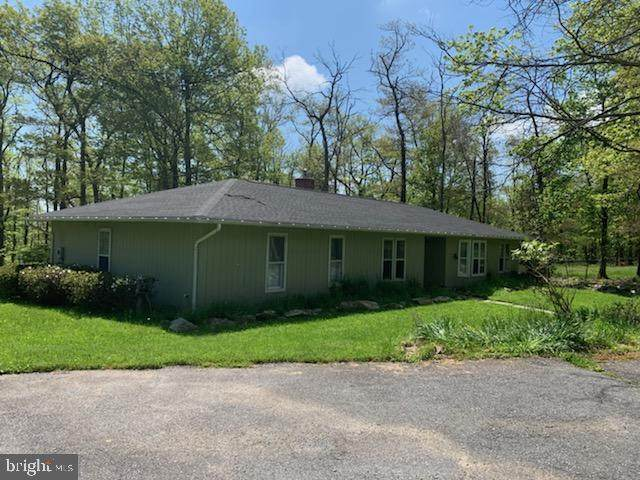 10819 Gambrill Park Road, FREDERICK, MD 21702 (#MDFR264686) :: Shamrock Realty Group, Inc