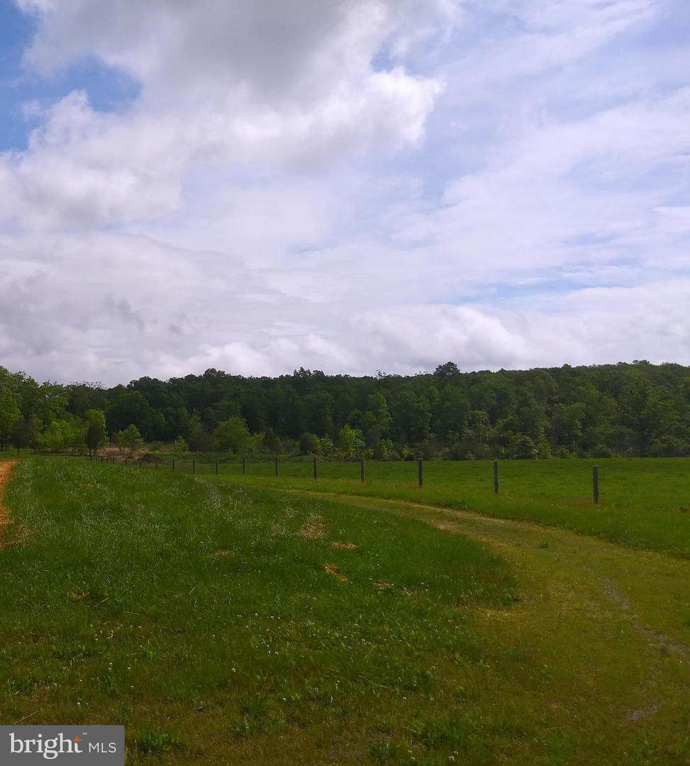 Back Mountain Road - Photo 1