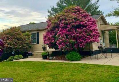 17134 Willow Creek Lane, CULPEPER, VA 22701 (#VACU141532) :: Great Falls Great Homes