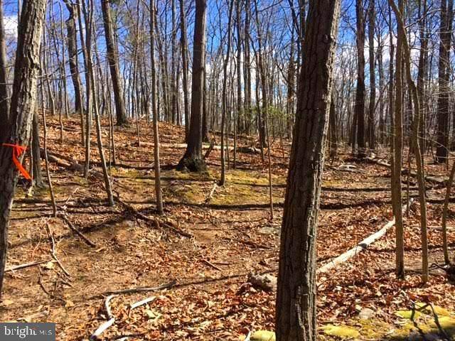 0 Elk Trail, WINCHESTER, VA 22603 (#VAFV157758) :: The Riffle Group of Keller Williams Select Realtors