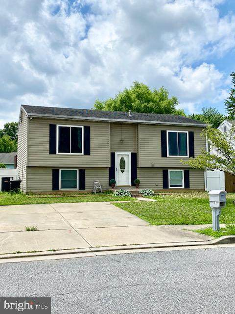 7162 Olivia Road, MIDDLE RIVER, MD 21220 (#MDBC495668) :: Jennifer Mack Properties