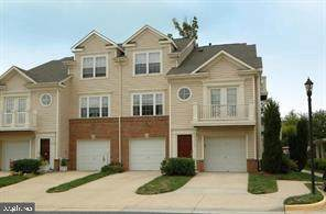 43353 Greyswallow Terrace, ASHBURN, VA 20147 (#VALO412726) :: Advon Group