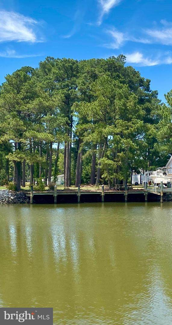 0 Annemessex Road, CRISFIELD, MD 21817 (#MDSO103618) :: Brandon Brittingham's Team