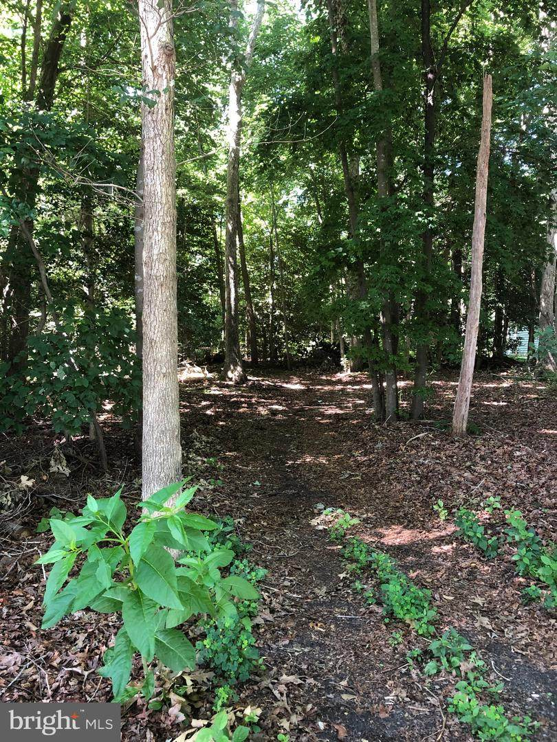 Lot 29 Lakeview Dr - Photo 1