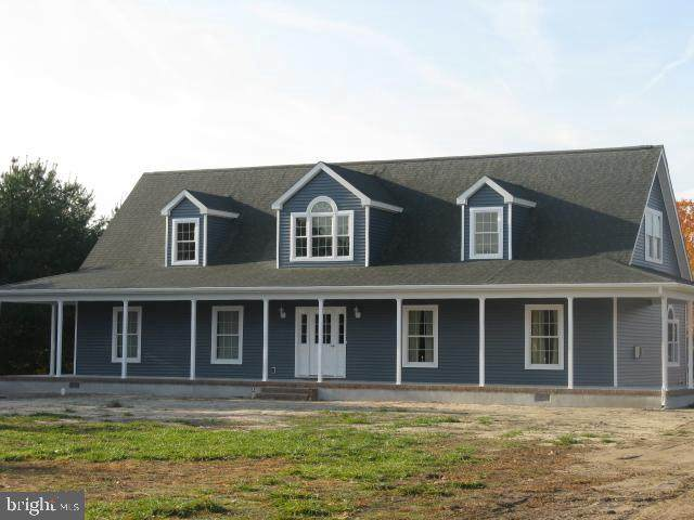 12 Austin Drive, MILLSBORO, DE 19966 (#DESU163020) :: Atlantic Shores Sotheby's International Realty