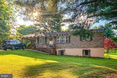 15503 Magnolia Drive, NEW FREEDOM, PA 17349 (#PAYK140732) :: The Joy Daniels Real Estate Group