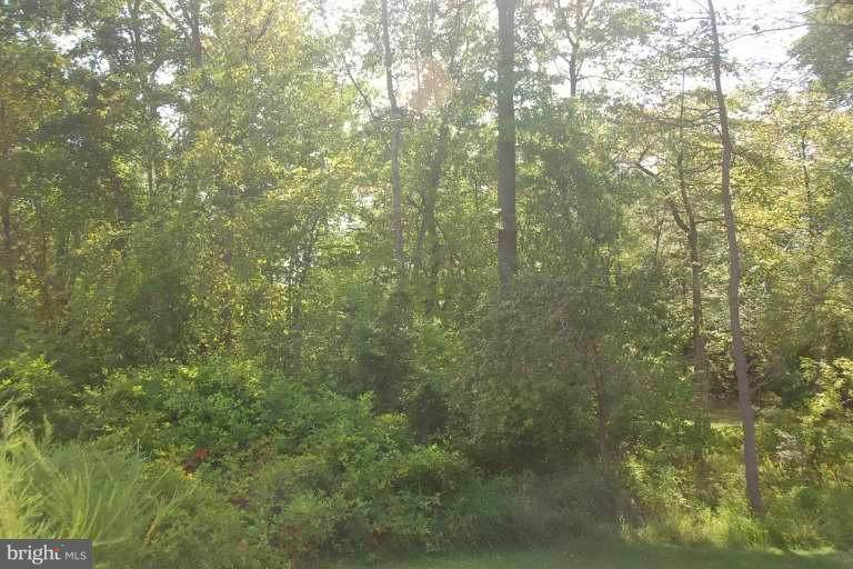 0 Old Busthead Rd - Photo 1