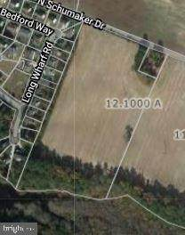 12.1 ACRES SCHUMAKER Drive, SALISBURY, MD 21804 (#MDWC108750) :: Charis Realty Group