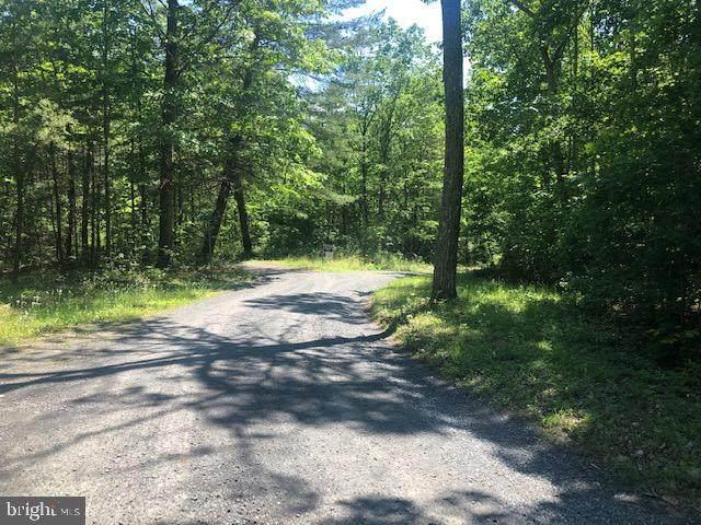 Laurel Springs, CULPEPER, VA 22701 (#VACU141930) :: Pearson Smith Realty