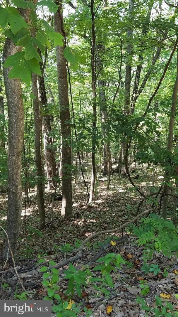 Lot 98 Nancy, FRONT ROYAL, VA 22630 (#VAWR140782) :: Jacobs & Co. Real Estate
