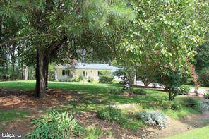 3123 Bay View Drive, CHURCH CREEK, MD 21622 (#MDDO125698) :: Brandon Brittingham's Team