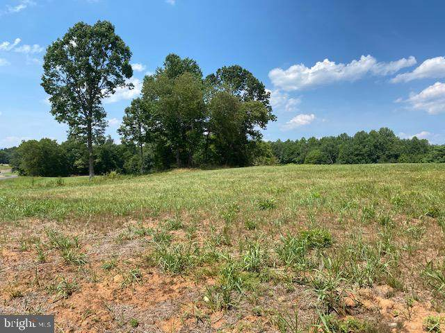 Lot F-2 Stonehouse Mountain Road, CULPEPER, VA 22701 (#VACU142144) :: Debbie Dogrul Associates - Long and Foster Real Estate