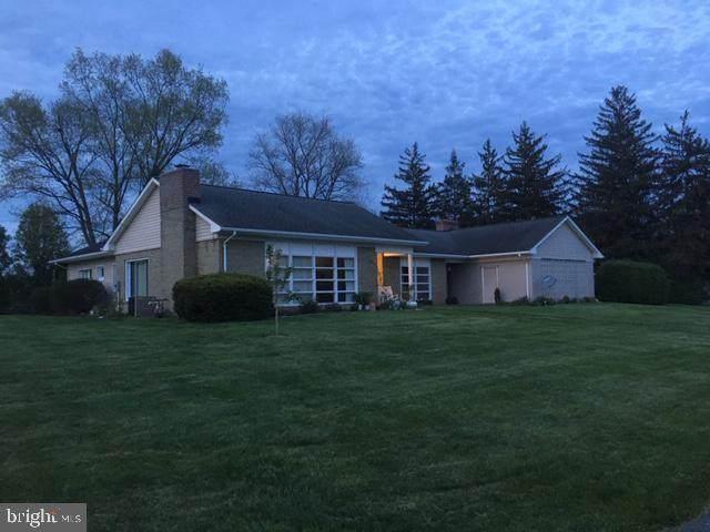 101 Driver Lane, NEW MARKET, VA 22844 (#VASH119858) :: Blackwell Real Estate