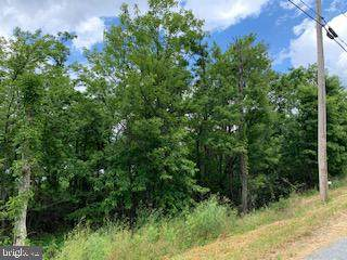 0 Timber Ridge Trail, WINCHESTER, VA 22602 (#VAFV159058) :: Pearson Smith Realty