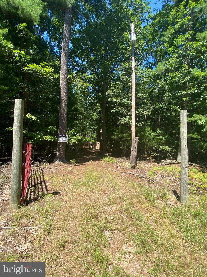 Lots 67 & 68 Tall Tree Dr - Photo 1