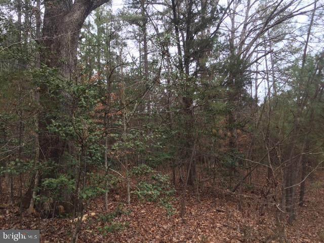 14111 Little Pond Trail, FREDERICKSBURG, VA 22407 (#VASP224344) :: Colgan Real Estate