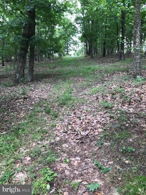 Hunting Ridge - Photo 1